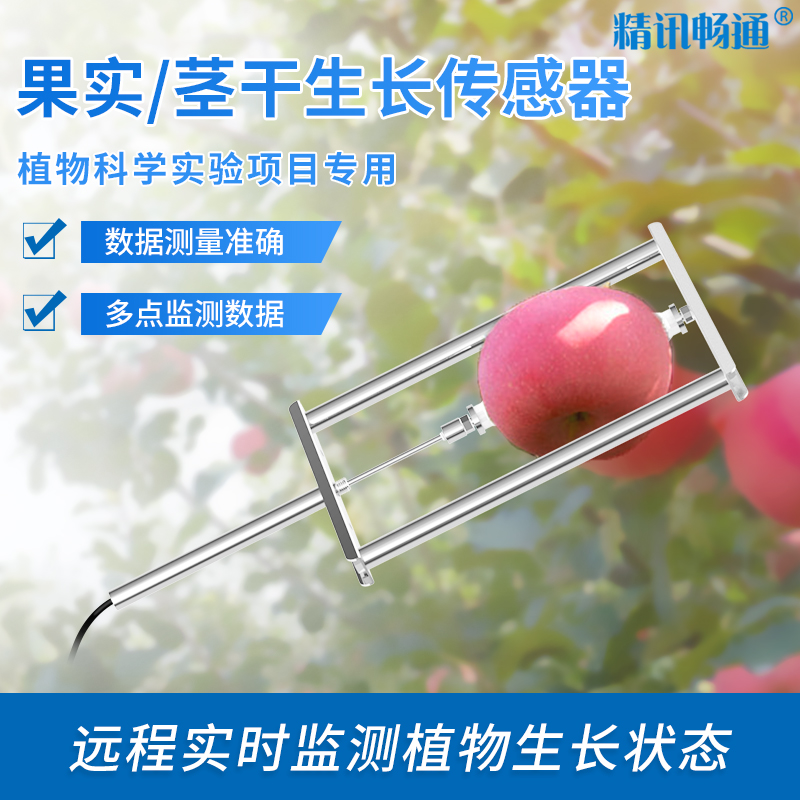 果实茎干生长传感器