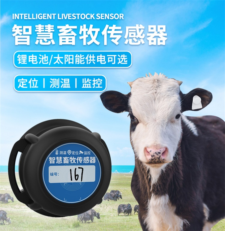 畜牧电子耳标