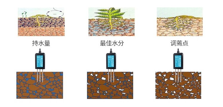 土壤水分监测