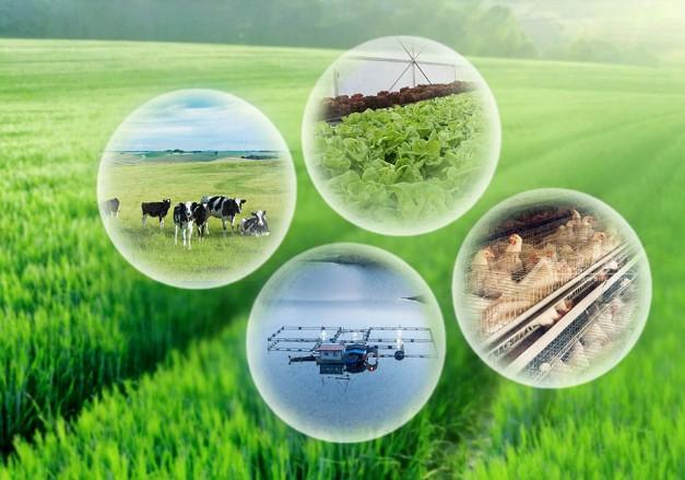 智慧农业的应用